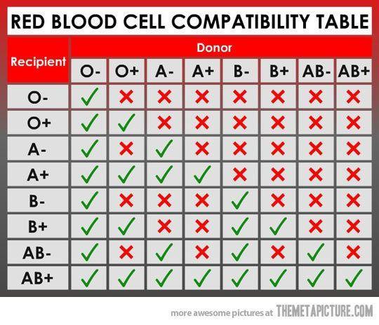 jenis darah