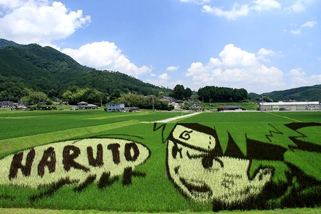 jepun 10 negara pengeluar beras terbesar di dunia