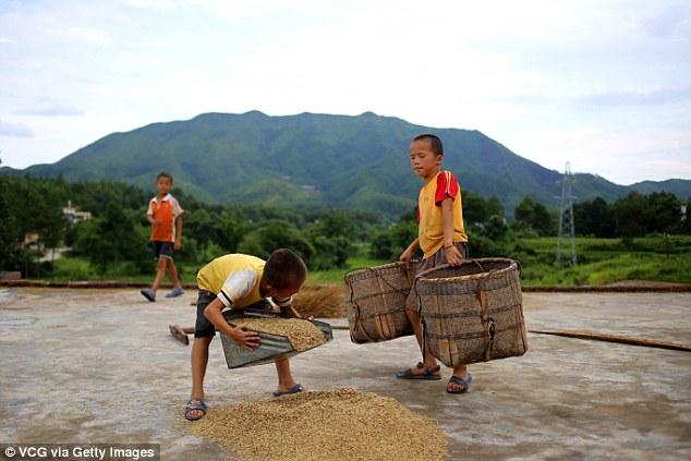 kanak kanak bermain sambil menolong orang buat kerja