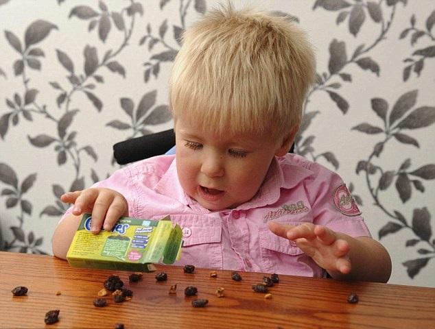kanak kanak suka makan kismis kerana rasanya yang manis 137
