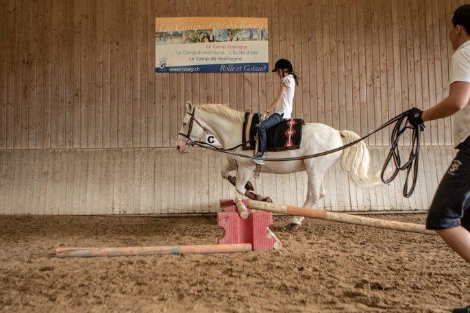 kandang kuda di sekolah institut le rosey mempunyai 20 ekor kuda
