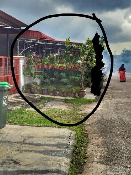 kegiatan fogging nyamuk aedes