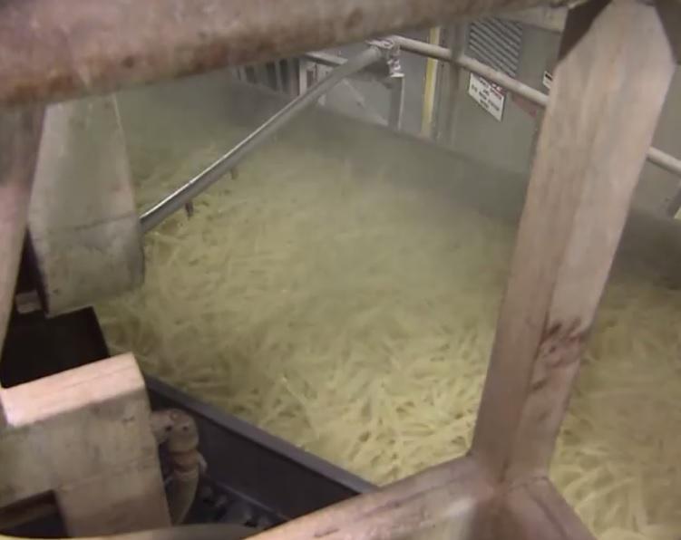 kentang goreng mcd 5 285