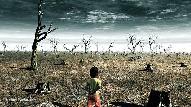 kesan agen oren kepada alam sekitar
