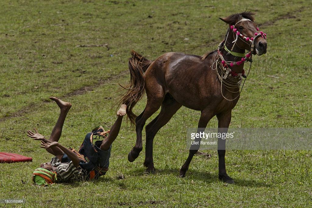 korban darah kaum sumba pasola lawan lembing atas kuda kepercayaan indonesia 2