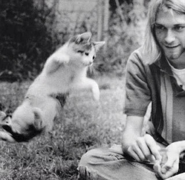 kurt cobain sukakan haiwan terutamanya kucing 2