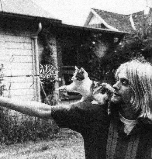 kurt cobain sukakan haiwan terutamanya kucing