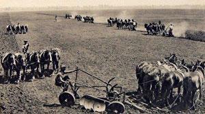 ladang di australia