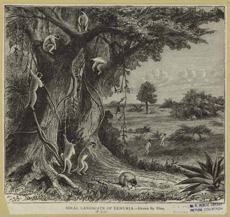 lakaran imaginasi lemuria pada tahun 1893