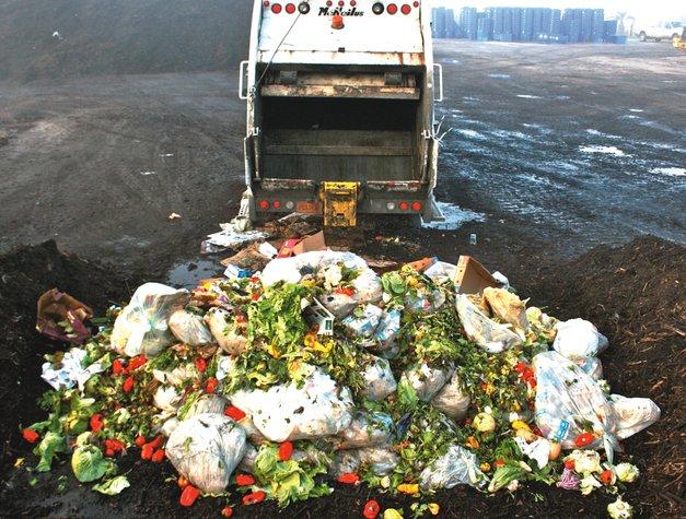 lebihan makanan terbuang didermakan kepada ladang khinzir
