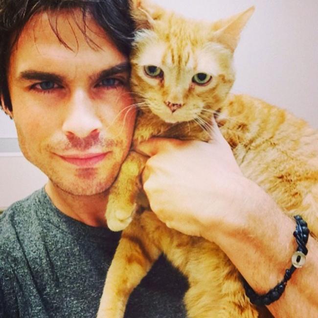lelaki dan kucing