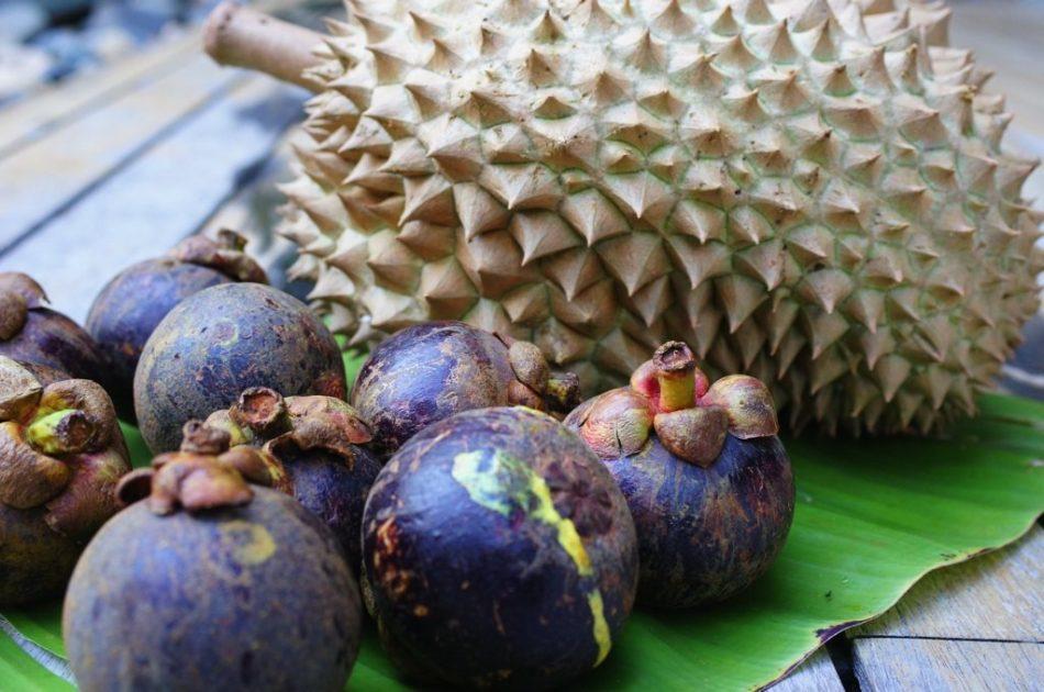 makan durian dan manggis bersama sama kurangkan rasa panas