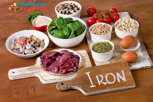 makanan tinggi zat besi