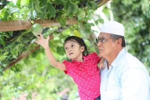 malaysia orang tua dan cucu