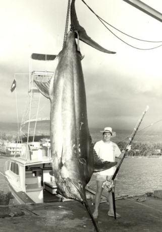 marlin ikan paling besar pernah ditangkap manusia
