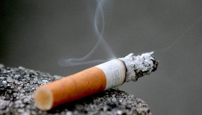 merokok 256