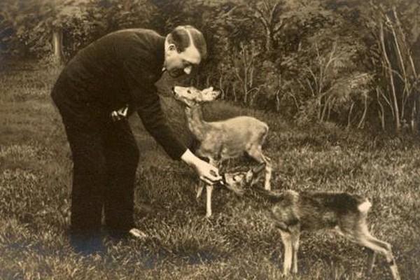 nazi bencikan kekejaman haiwan 7 perkara yang anda tak tahu mengenai nazi jerman 0