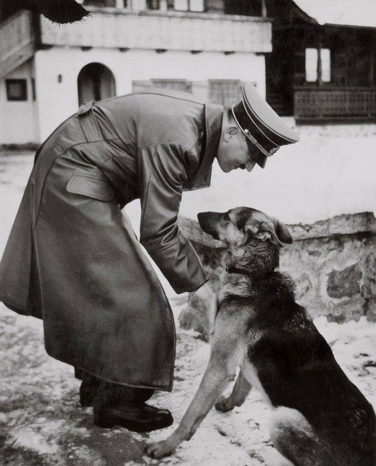 nazi bencikan kekejaman haiwan 7 perkara yang anda tak tahu mengenai nazi jerman 3