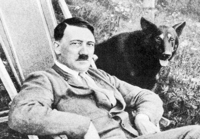 nazi bencikan kekejaman haiwan 7 perkara yang anda tak tahu mengenai nazi jerman 4