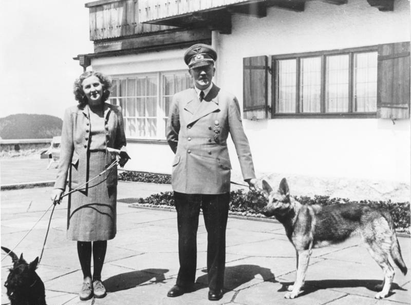 nazi bencikan kekejaman haiwan 7 perkara yang anda tak tahu mengenai nazi jerman 5