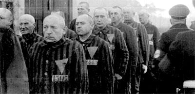 nazi bencikan lelaki homoseksual 7 perkara yang anda tak tahu mengenai nazi jerman