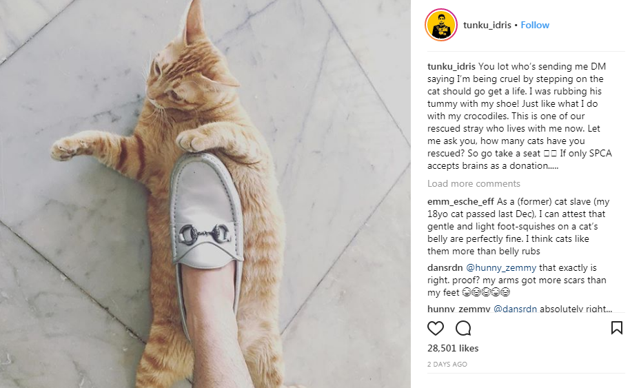 netizen berang tunku idris pijak kucing ini penjelasan beliau 1