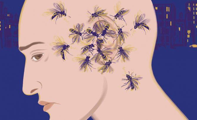 nyamuk terbang berdekatan telinga
