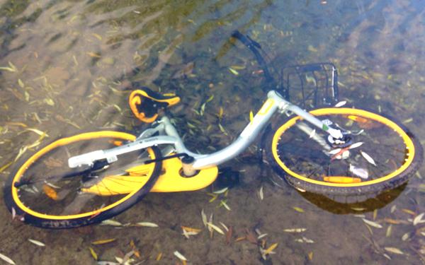 obike thrashing thrown away vandalized