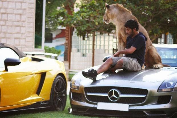 orang arab kaya mercedes singa