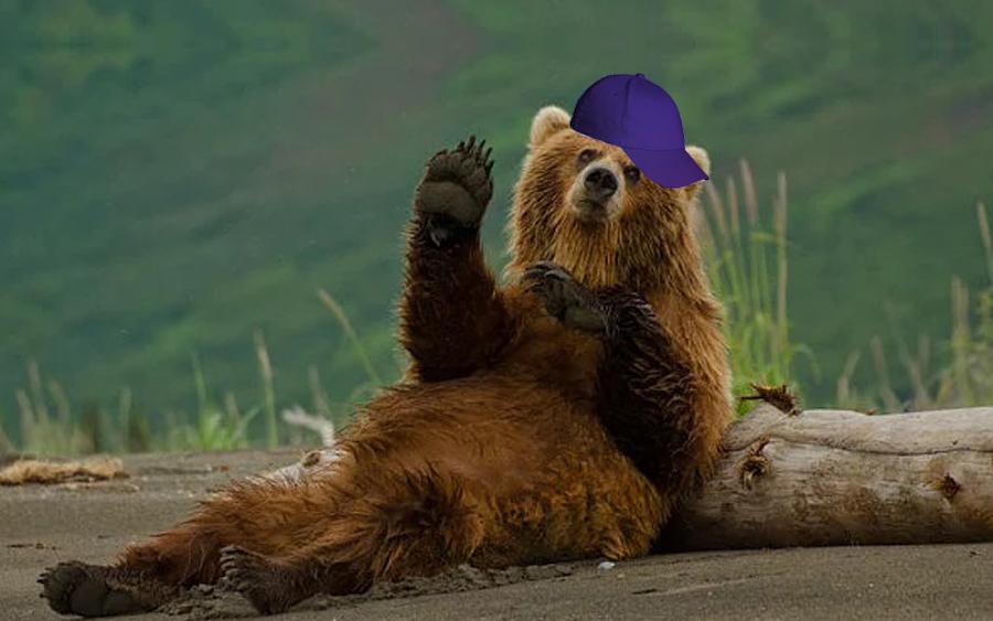 pablo escobear beruang kokain 481