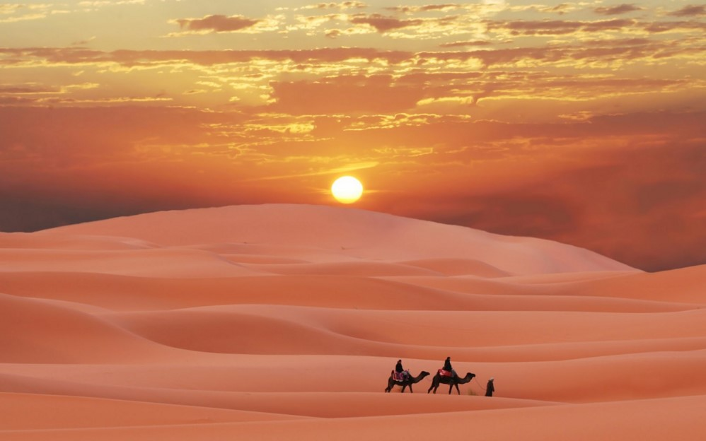 padang pasir 389
