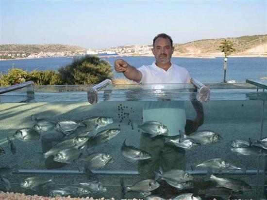 pagar rumah berbentuk akuarium di turki