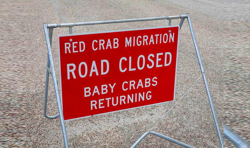 papan tanda penghijrahan ketam merah