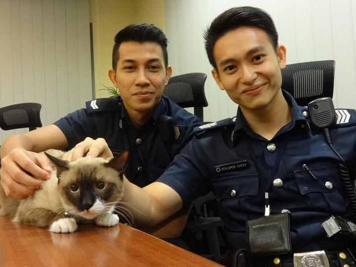 pegawai polis 8 pekerjaan yang tak akan diambil alih oleh ai