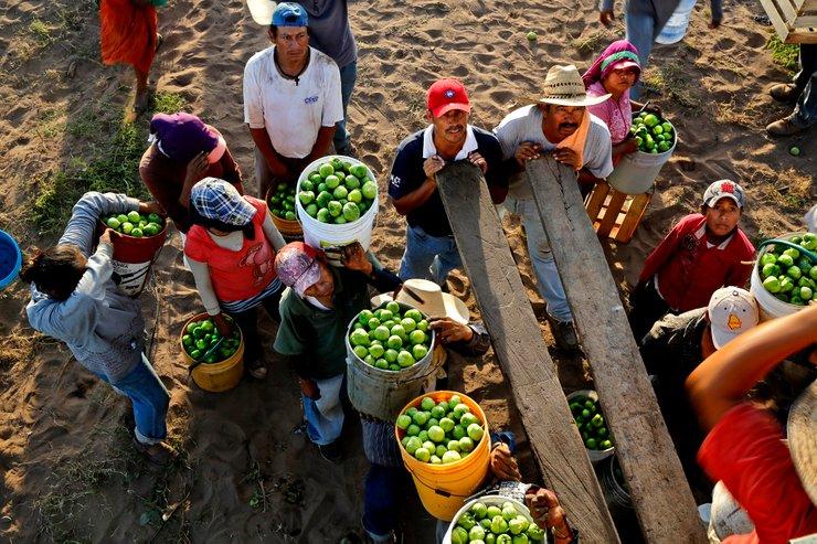 pekerja di mexico