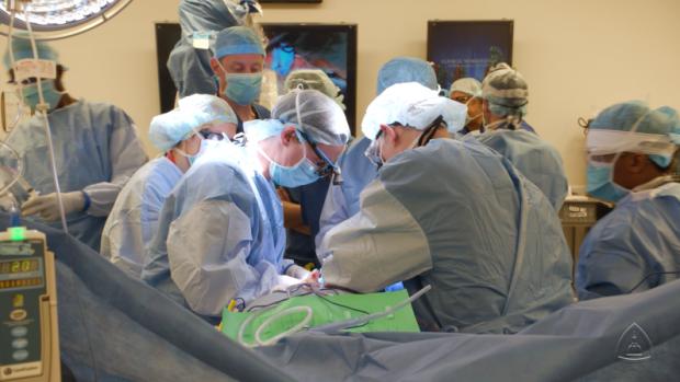 pembedahan pemindahan zakar