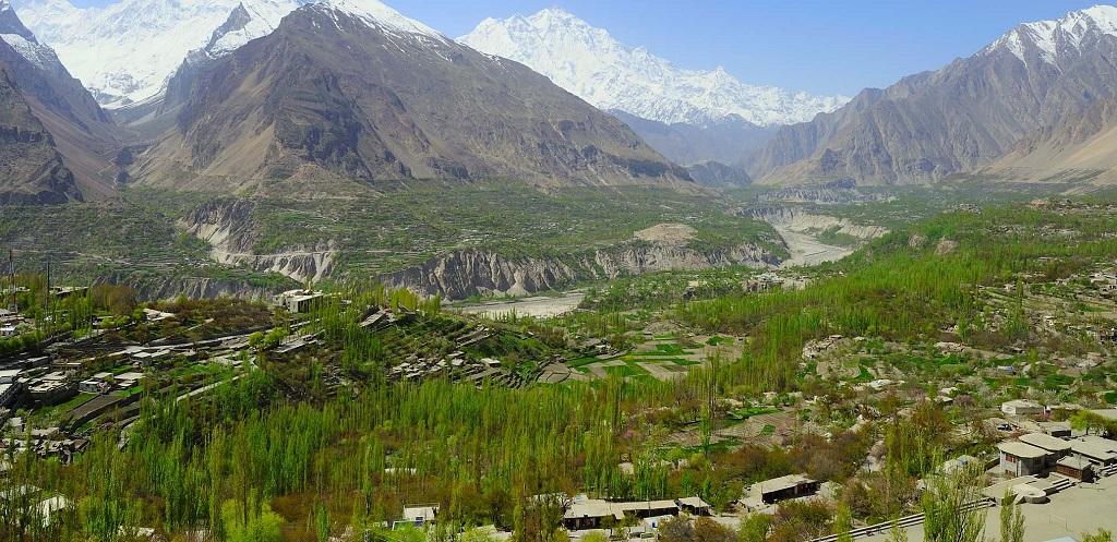 penanaman semula pokok di hutan pakistan