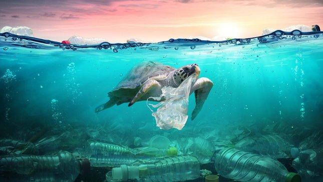 pencemaran plastik 717