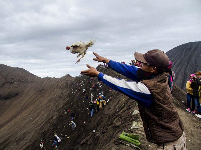 pengunjung melempar sesembahan ke dalam kawah gunung