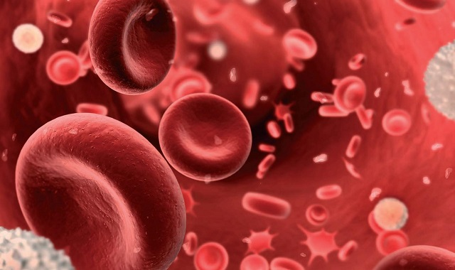 peranan darah berbeza 80