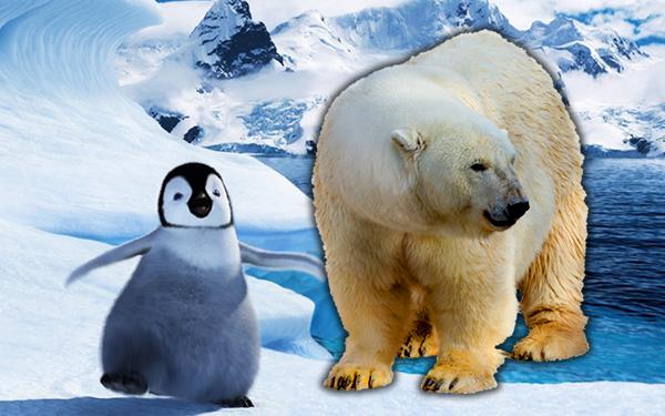 perbezaan artik antartika kutub utara kutub selatan