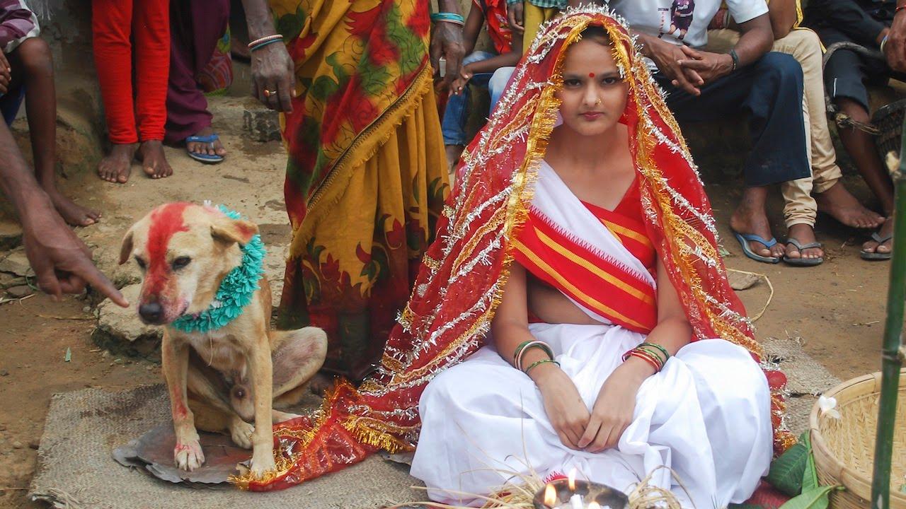 perkahwinan haiwan hindu