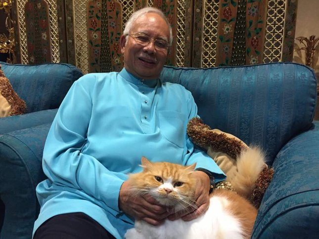 pm najib bersama kucing debab