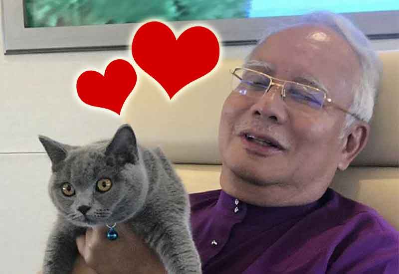pm najib dapat hadiah kucing gemuk