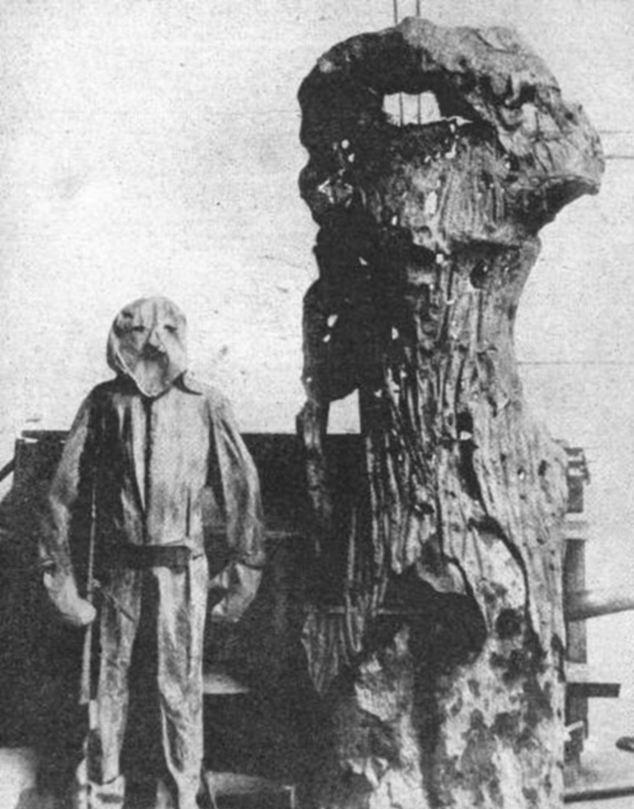 pokok palsu 865