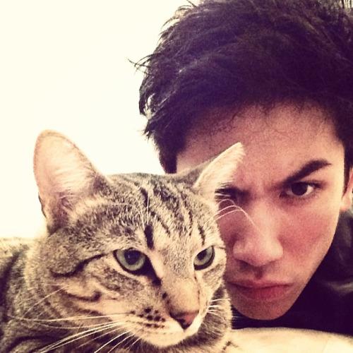 prince cat