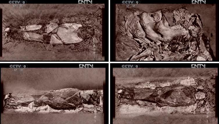 proses mendedahkan mayat xin zhui