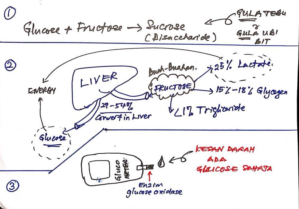 proses penukaran gula