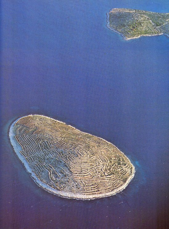 pulau baljenic min 855