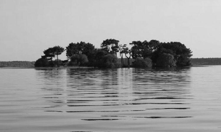 pulau nazino